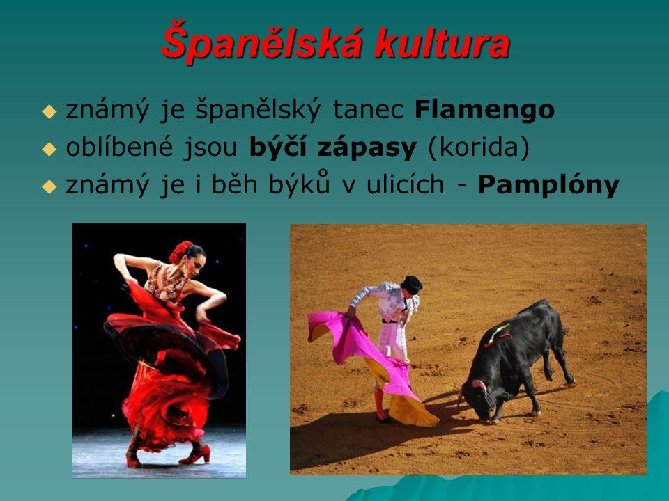 Španělská kultura   známý je španělský tanec Flamengo   oblíbené jsou býčí zápasy (korida)   známý je i běh býků v ulicích - Pamplóny
