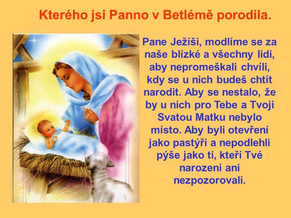 Kterého jsi Panno v Betlémě porodila. Pane Ježíši, modlíme se za naše blízké a všechny lidi, aby nepromeškali chvíli, kdy se u nich budeš chtít narodi