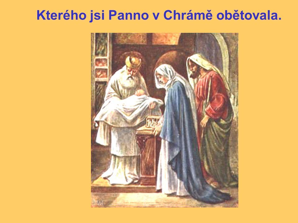 Kterého jsi Panno v Chrámě obětovala.