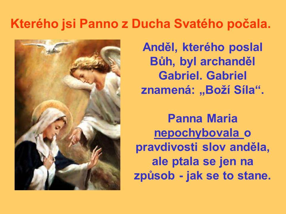 """Kterého jsi Panno z Ducha Svatého počala. Anděl, kterého poslal Bůh, byl archanděl Gabriel. Gabriel znamená: """"Boží Síla"""". Panna Maria nepochybovala o"""
