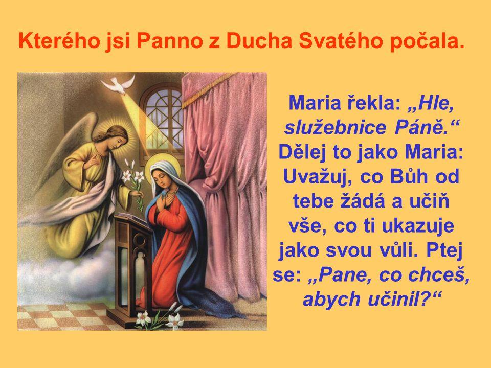 """Kterého jsi Panno z Ducha Svatého počala. Maria řekla: """"Hle, služebnice Páně."""" Dělej to jako Maria: Uvažuj, co Bůh od tebe žádá a učiň vše, co ti ukaz"""