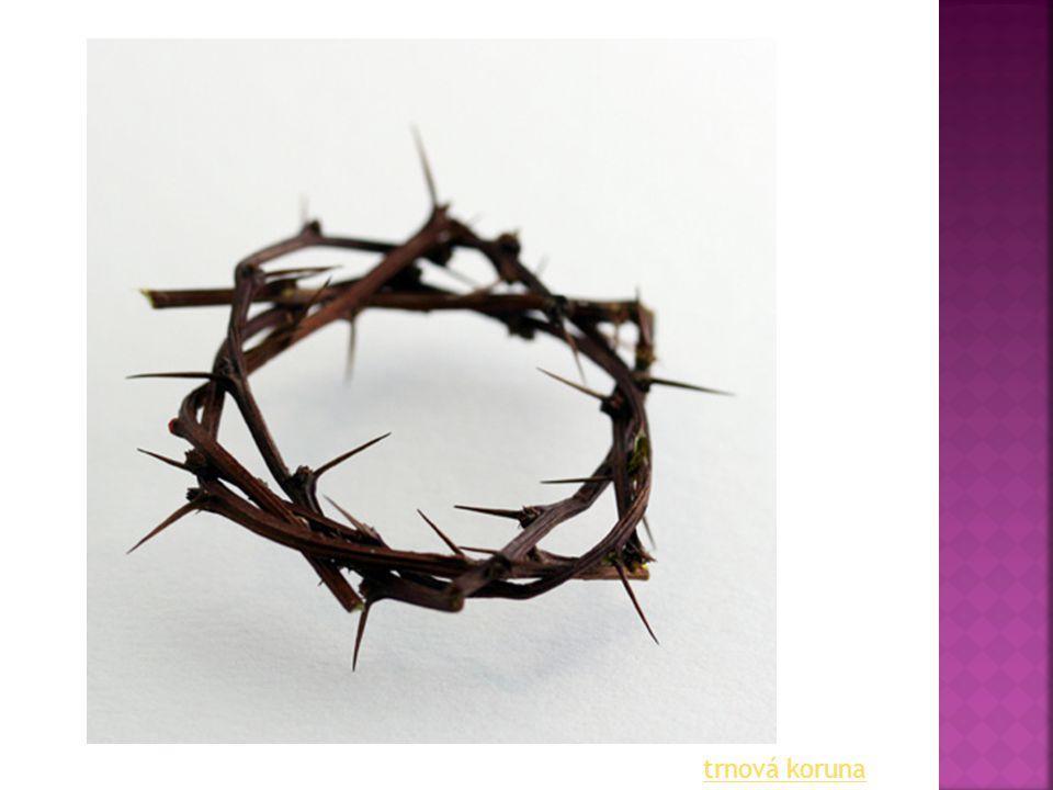  Velikonoční (Velká) neděle  Svěcení velikonočních pokrmů (vejce, mazance, beránčí maso,…)  Svěcení pole, osiva,…  nesmělo se pracovat, uklízet, prát, vařit, mýt nádobí,…  Hospodář obětoval svěcené jídlo, aby byla dobrá úroda