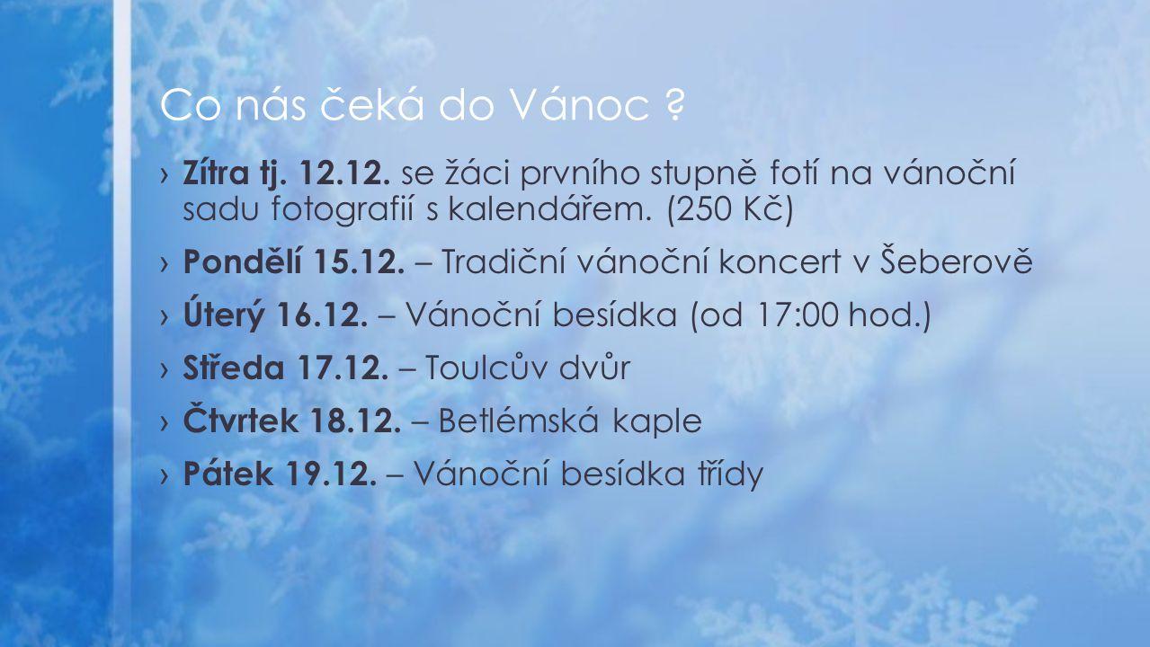 › Zítra tj. 12.12. se žáci prvního stupně fotí na vánoční sadu fotografií s kalendářem.