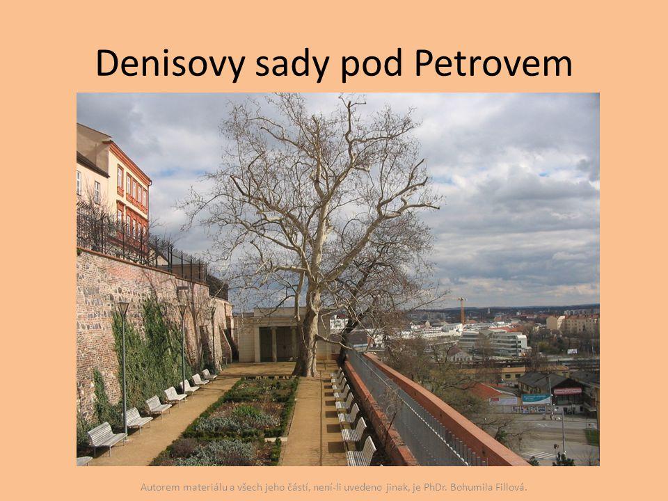 Denisovy sady pod Petrovem Autorem materiálu a všech jeho částí, není-li uvedeno jinak, je PhDr. Bohumila Fillová.