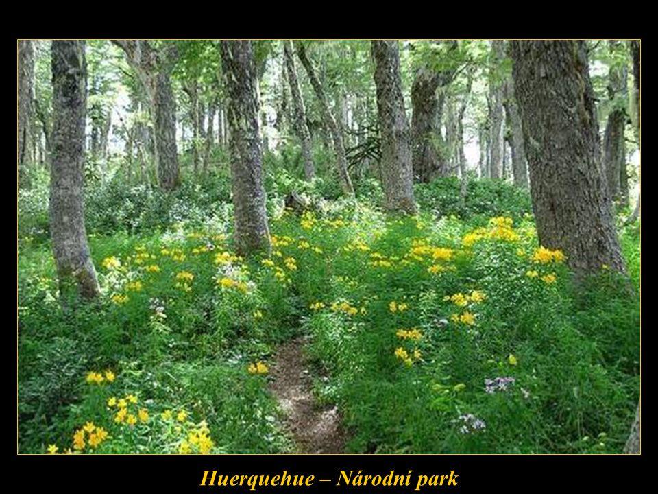 Huerquehue – Národní park