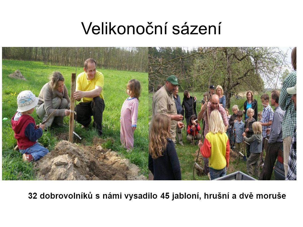 Velikonoční sázení 32 dobrovolníků s námi vysadilo 45 jabloní, hrušní a dvě moruše