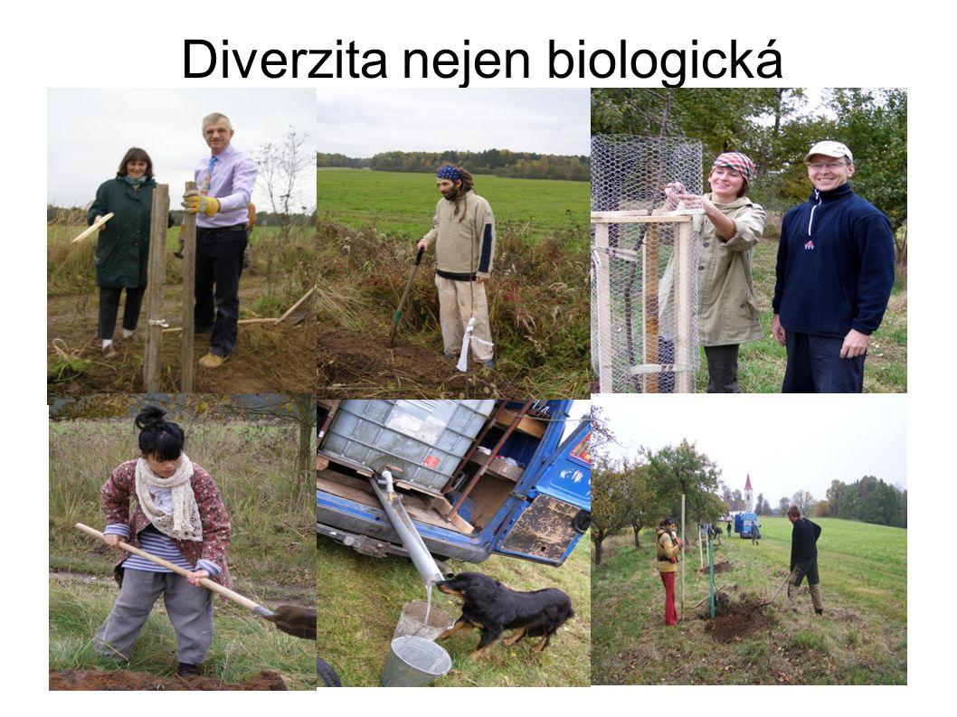 Diverzita nejen biologická
