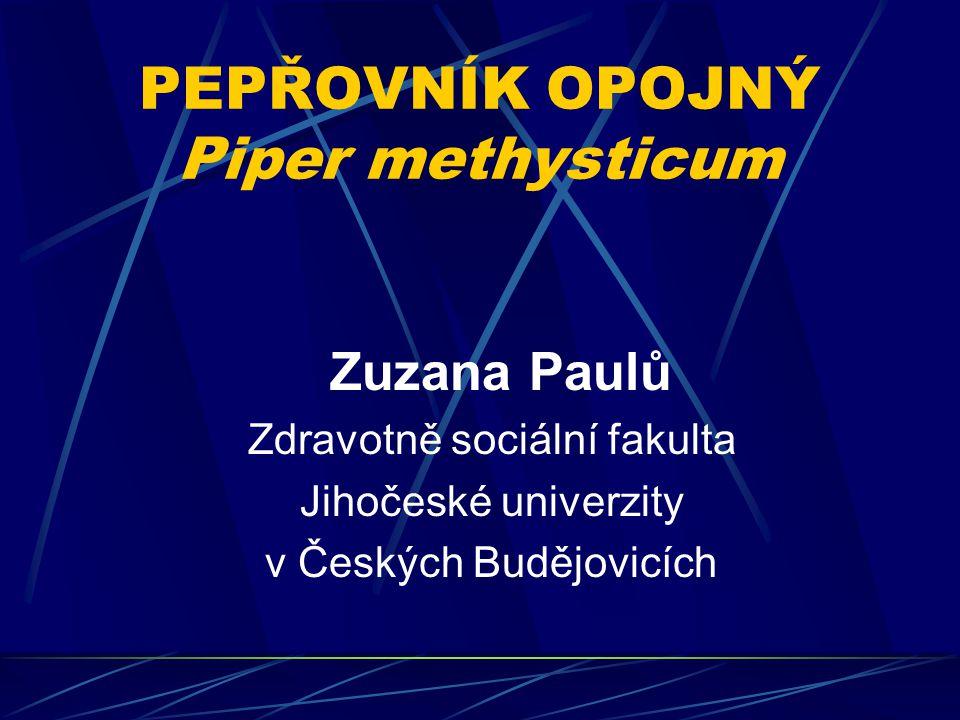 PEPŘOVNÍK OPOJNÝ Piper methysticum Zuzana Paulů Zdravotně sociální fakulta Jihočeské univerzity v Českých Budějovicích