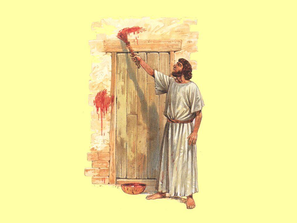 Kde bude na dveřích krev beránka, tam nevstupuj.