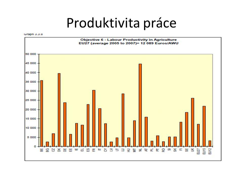 Produktivita práce