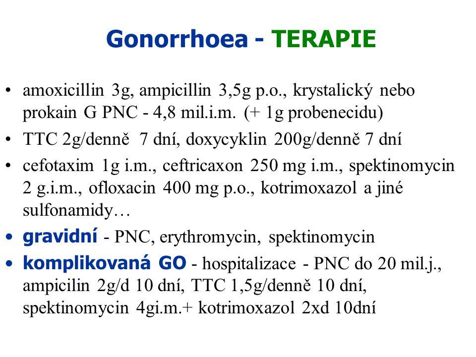 Gonorrhoea - TERAPIE amoxicillin 3g, ampicillin 3,5g p.o., krystalický nebo prokain G PNC - 4,8 mil.i.m. (+ 1g probenecidu) TTC 2g/denně 7 dní, doxycy
