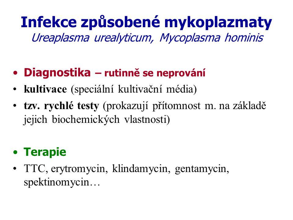 Infekce způsobené mykoplazmaty Ureaplasma urealyticum, Mycoplasma hominis Diagnostika – rutinně se neprování kultivace (speciální kultivační média) tz