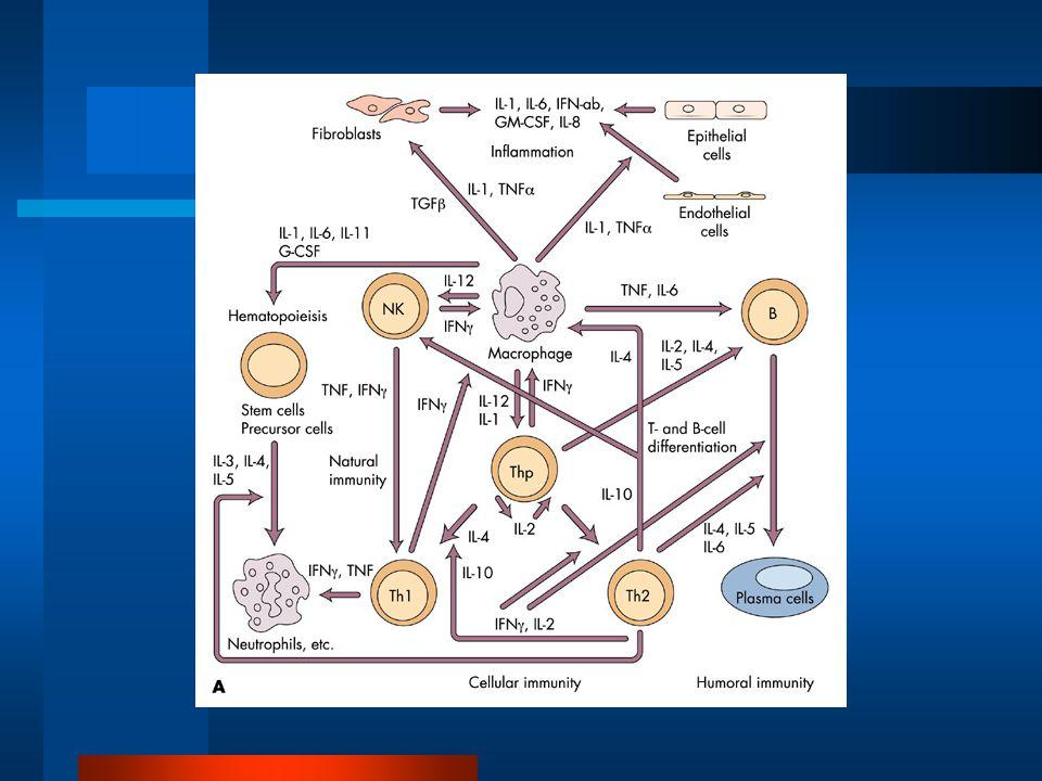 Hladina PCT – odraz závažné infekce