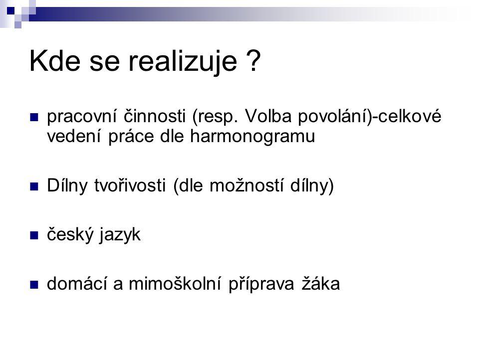 Kde se realizuje ? pracovní činnosti (resp. Volba povolání)-celkové vedení práce dle harmonogramu Dílny tvořivosti (dle možností dílny) český jazyk do