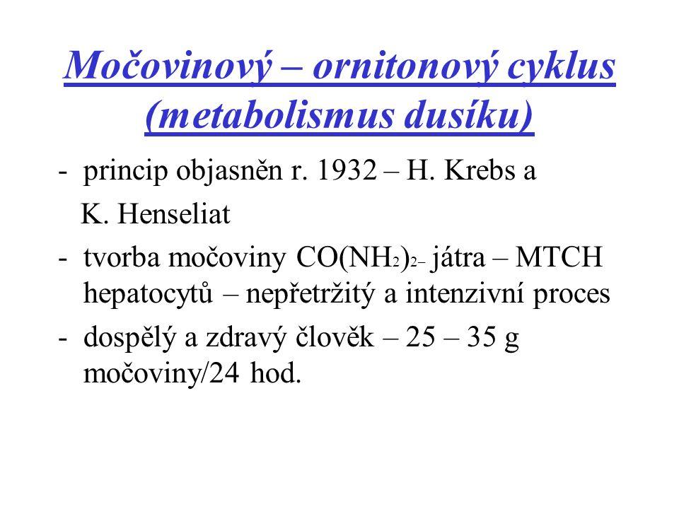 Metabolismus dusíku -různý, dle typu organismu -pro živočišný organismus je NH 3 toxický 1.AMONOTELNÍ ŽIVOČICHOVÉ vodní živočichové – přebytečný amoniak je rozpustný ve vodě – vylučován žábrami 2.URIKOTELNÍ ŽIVOČICHOVÉ amoniak je metabolizován na kyselinu močovou – pro svou malou rozpustnost není toxická (vejcorodí plazi, ptáci, paryby)