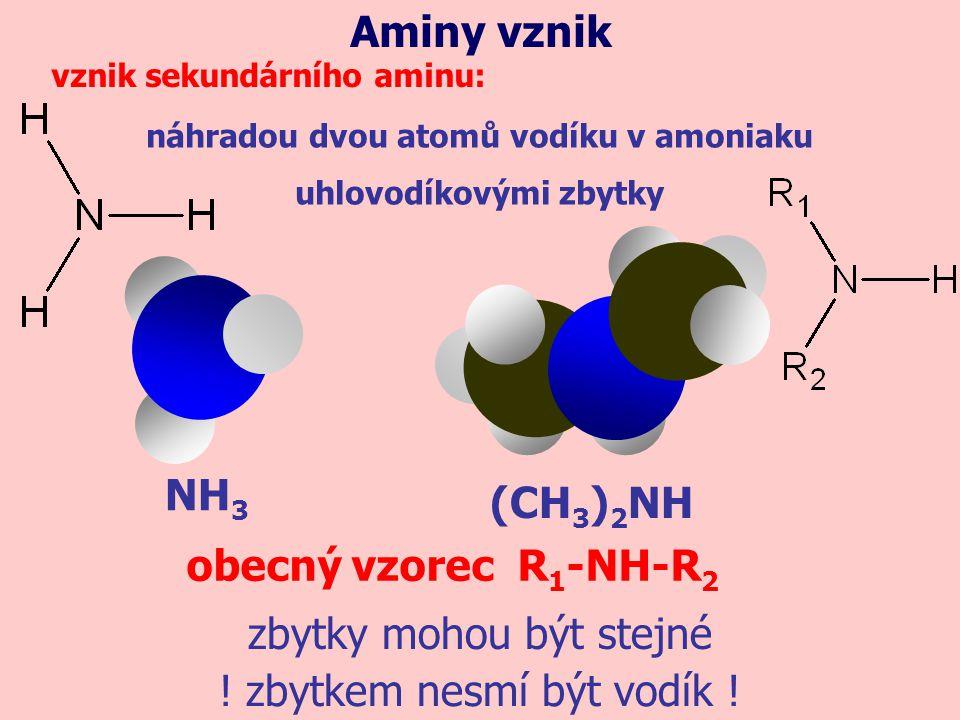 NH 3 náhradou dvou atomů vodíku v amoniaku uhlovodíkovými zbytky Aminy vznik vznik sekundárního aminu: (CH 3 ) 2 NH obecný vzorec R 1 -NH-R 2 ! zbytke