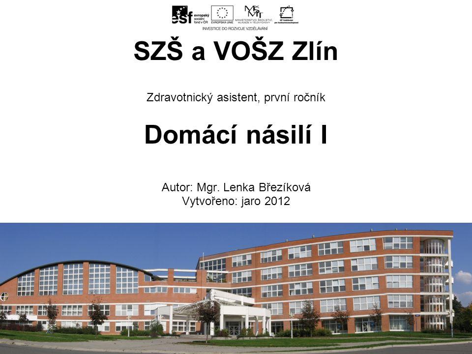 Zdravotnický asistent, první ročník Domácí násilí I Autor: Mgr.