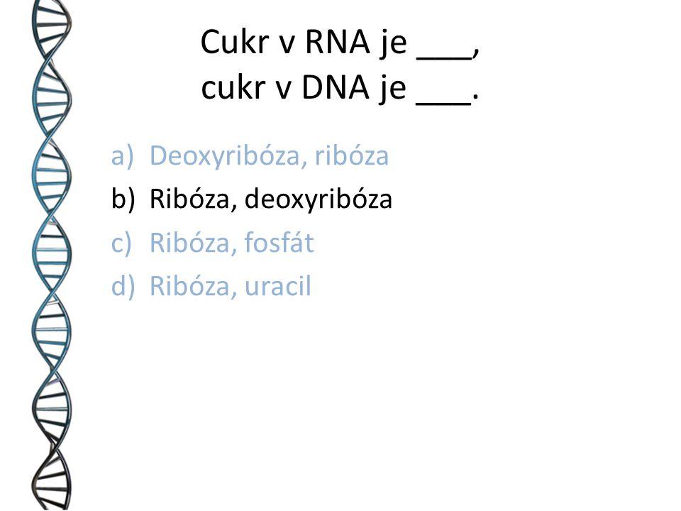 Cukr v RNA je ___, cukr v DNA je ___.