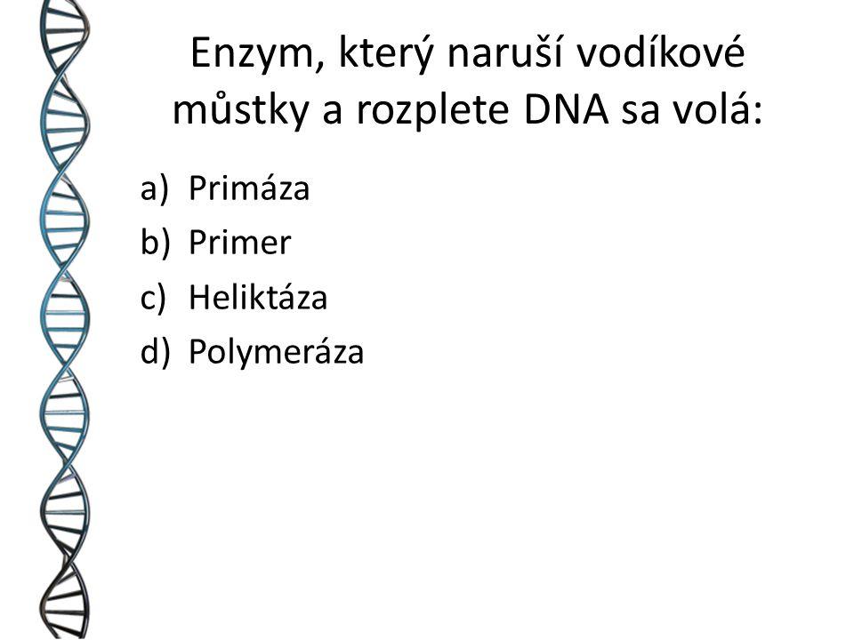Enzym, který naruší vodíkové můstky a rozplete DNA sa volá: a)Primáza b)Primer c)Heliktáza d)Polymeráza