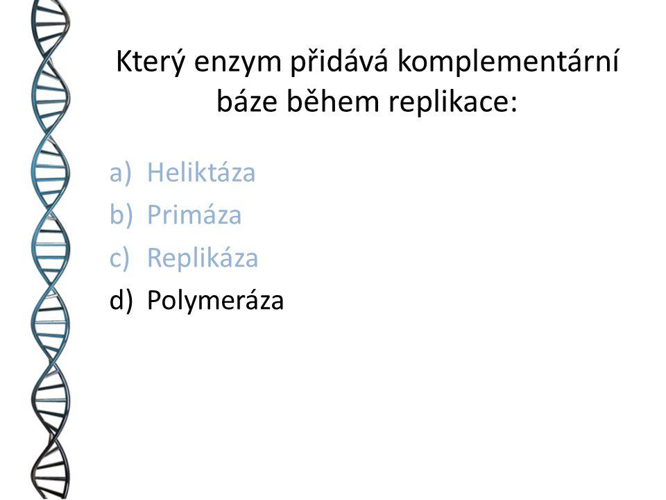 Který enzym přidává komplementární báze během replikace: a)Heliktáza b)Primáza c)Replikáza d)Polymeráza