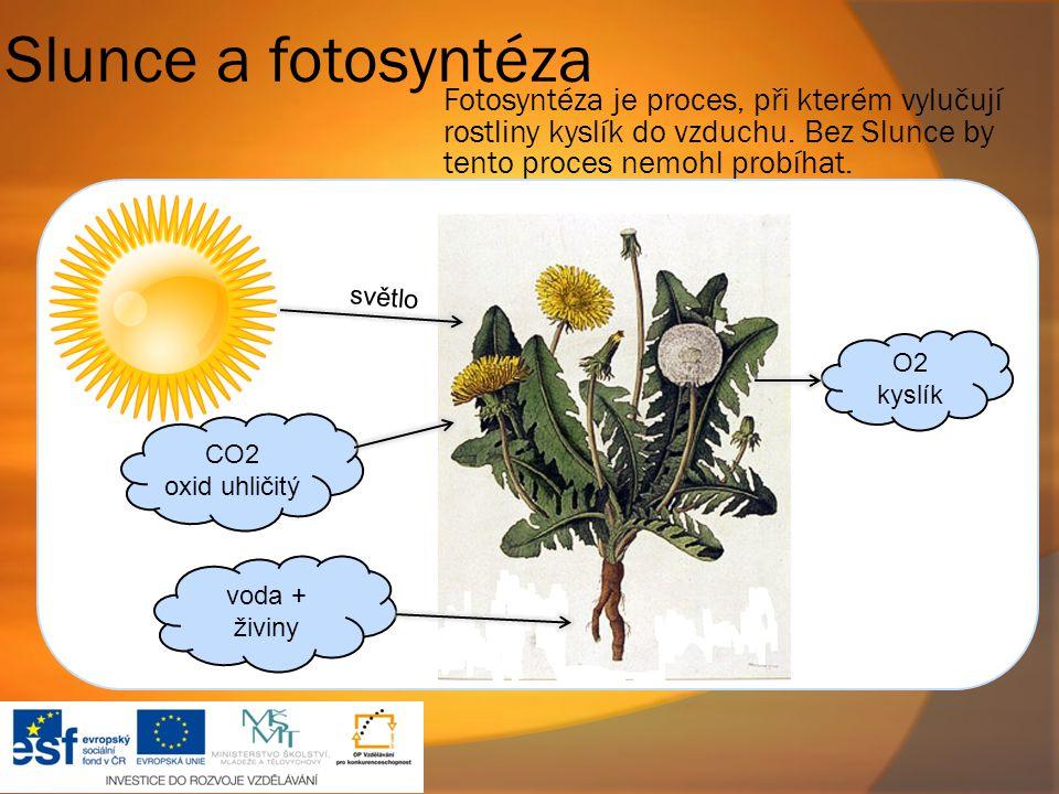 Slunce a fotosyntéza CO2 oxid uhličitý voda + živiny Fotosyntéza je proces, při kterém vylučují rostliny kyslík do vzduchu. Bez Slunce by tento proces