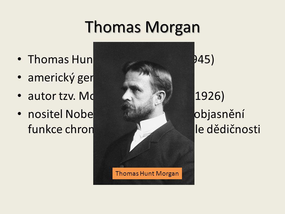Thomas Morgan Thomas Hunt Morgan (1866 – 1945) americký genetik autor tzv.