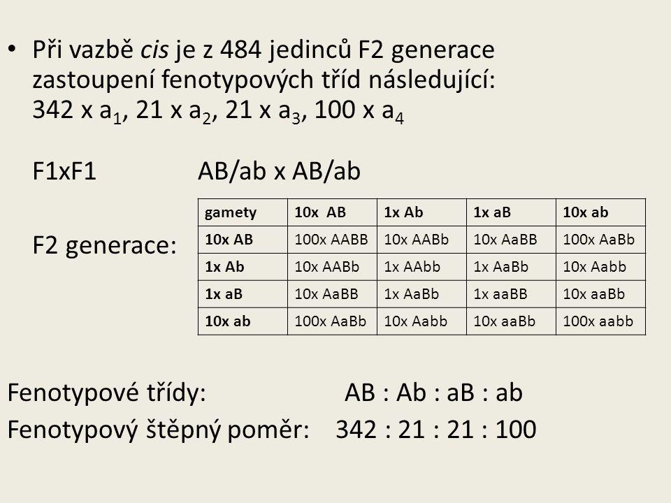 Při vazbě cis je z 484 jedinců F2 generace zastoupení fenotypových tříd následující: 342 x a 1, 21 x a 2, 21 x a 3, 100 x a 4 F1xF1 AB/ab x AB/ab F2 generace: Fenotypové třídy: AB : Ab : aB : ab Fenotypový štěpný poměr: 342 : 21 : 21 : 100 gamety10x AB1x Ab1x aB10x ab 10x AB100x AABB10x AABb10x AaBB100x AaBb 1x Ab10x AABb1x AAbb1x AaBb10x Aabb 1x aB10x AaBB1x AaBb1x aaBB10x aaBb 10x ab100x AaBb10x Aabb10x aaBb100x aabb