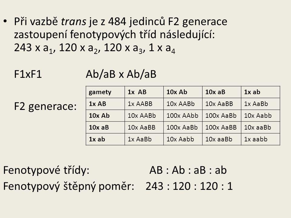 Při vazbě trans je z 484 jedinců F2 generace zastoupení fenotypových tříd následující: 243 x a 1, 120 x a 2, 120 x a 3, 1 x a 4 F1xF1 Ab/aB x Ab/aB F2 generace: Fenotypové třídy: AB : Ab : aB : ab Fenotypový štěpný poměr: 243 : 120 : 120 : 1 gamety1x AB10x Ab10x aB1x ab 1x AB1x AABB10x AABb10x AaBB1x AaBb 10x Ab10x AABb100x AAbb100x AaBb10x Aabb 10x aB10x AaBB100x AaBb100x AaBB10x aaBb 1x ab1x AaBb10x Aabb10x aaBb1x aabb
