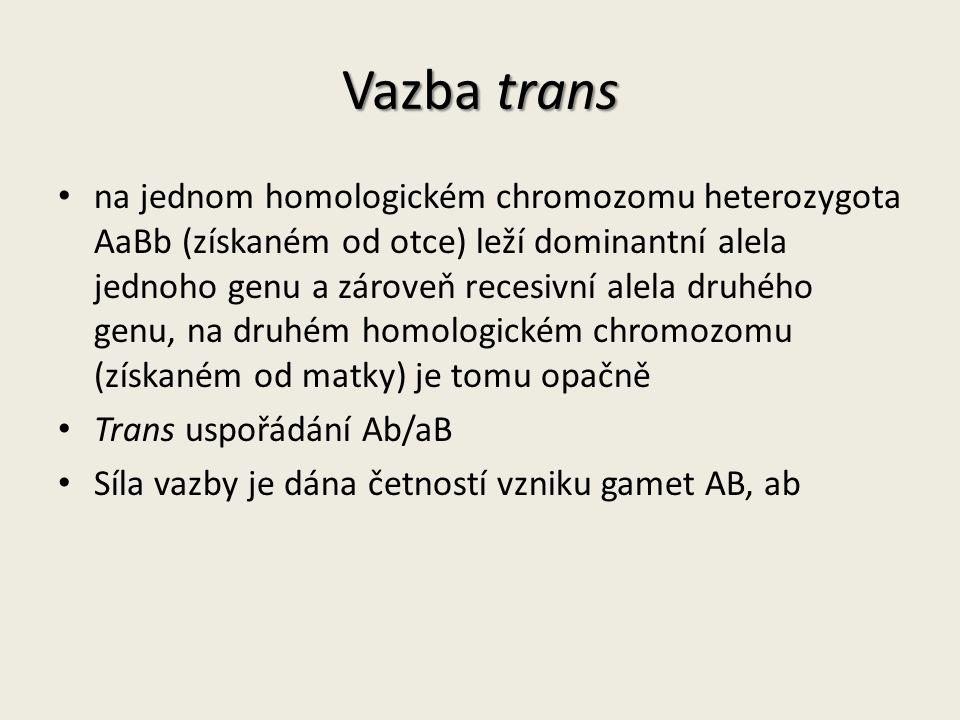 Vazba trans na jednom homologickém chromozomu heterozygota AaBb (získaném od otce) leží dominantní alela jednoho genu a zároveň recesivní alela druhého genu, na druhém homologickém chromozomu (získaném od matky) je tomu opačně Trans uspořádání Ab/aB Síla vazby je dána četností vzniku gamet AB, ab
