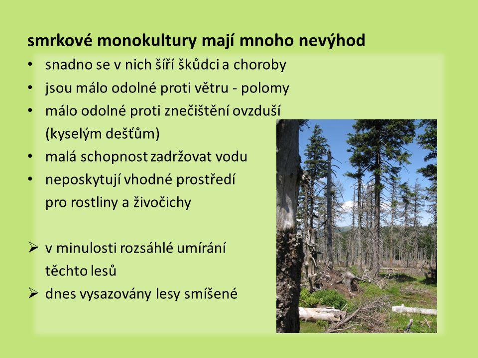 smrkové monokultury mají mnoho nevýhod snadno se v nich šíří škůdci a choroby jsou málo odolné proti větru - polomy málo odolné proti znečištění ovzduší (kyselým dešťům) malá schopnost zadržovat vodu neposkytují vhodné prostředí pro rostliny a živočichy  v minulosti rozsáhlé umírání těchto lesů  dnes vysazovány lesy smíšené