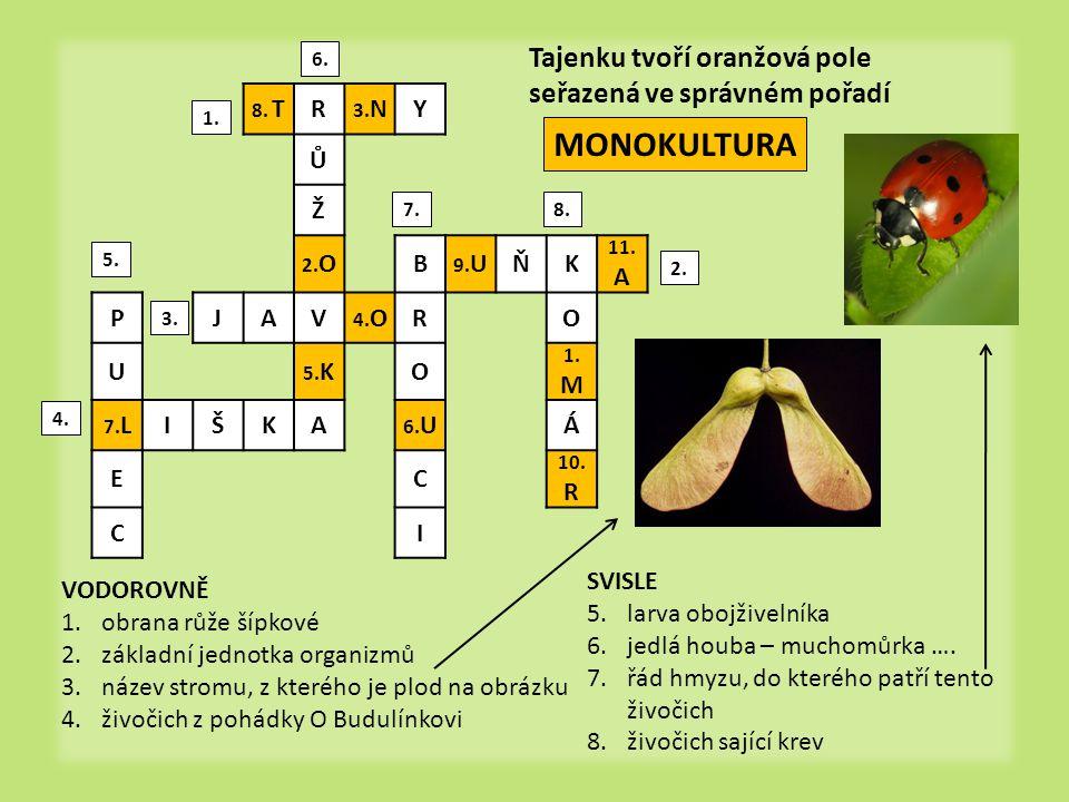 monokultura = porost tvořený převážně jedním druhem rostliny  Znáte nějaký další příklad monokultur.