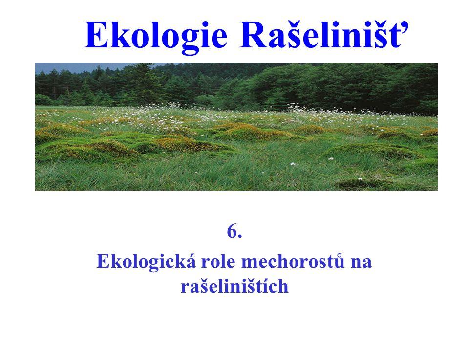 Ekologie Rašelinišť 6. Ekologická role mechorostů na rašeliništích
