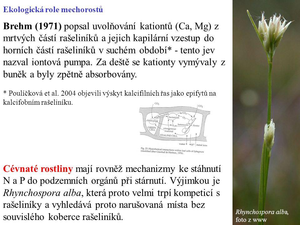 Brehm (1971) popsal uvolňování kationtů (Ca, Mg) z mrtvých částí rašeliníků a jejich kapilární vzestup do horních částí rašeliníků v suchém období* - tento jev nazval iontová pumpa.