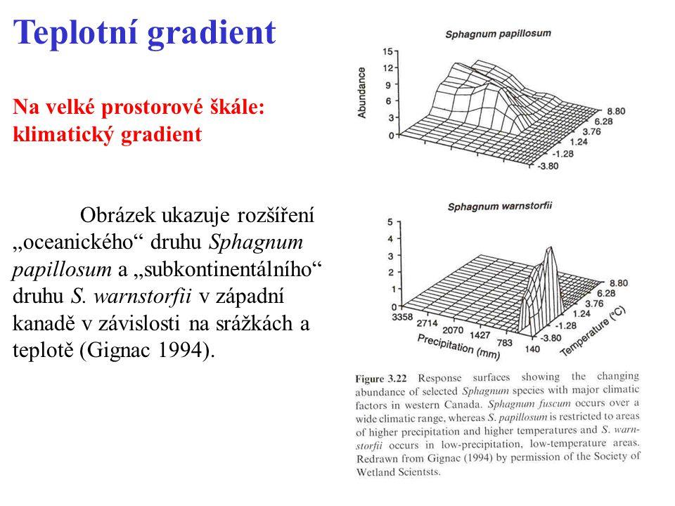 """Teplotní gradient Na velké prostorové škále: klimatický gradient Obrázek ukazuje rozšíření """"oceanického druhu Sphagnum papillosum a """"subkontinentálního druhu S."""