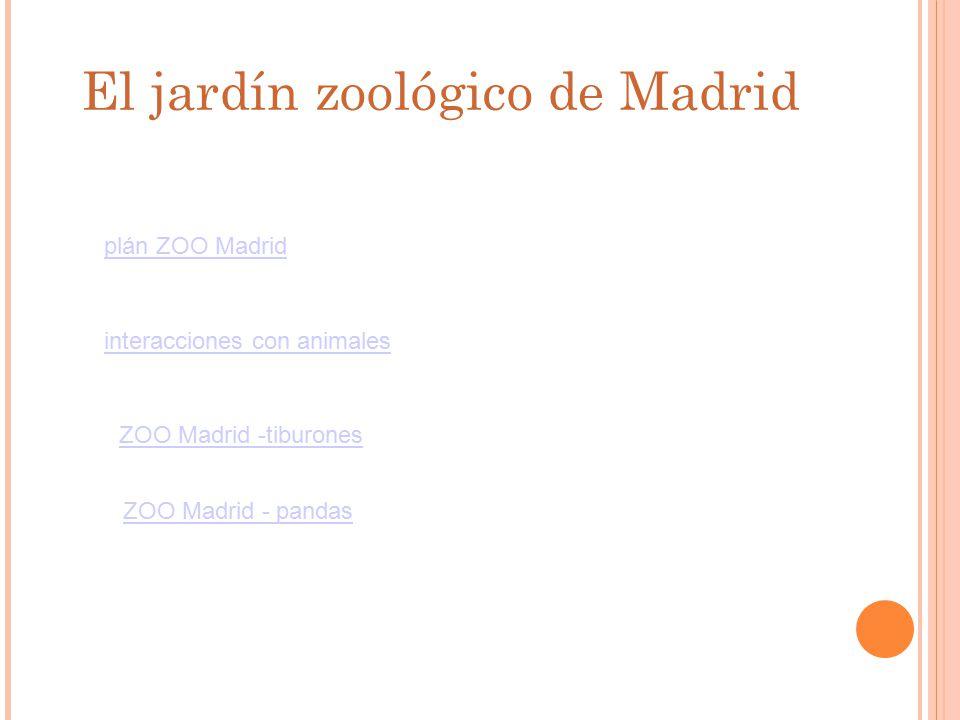 El jardín zoológico de Madrid plán ZOO Madrid interacciones con animales ZOO Madrid -tiburones ZOO Madrid - pandas