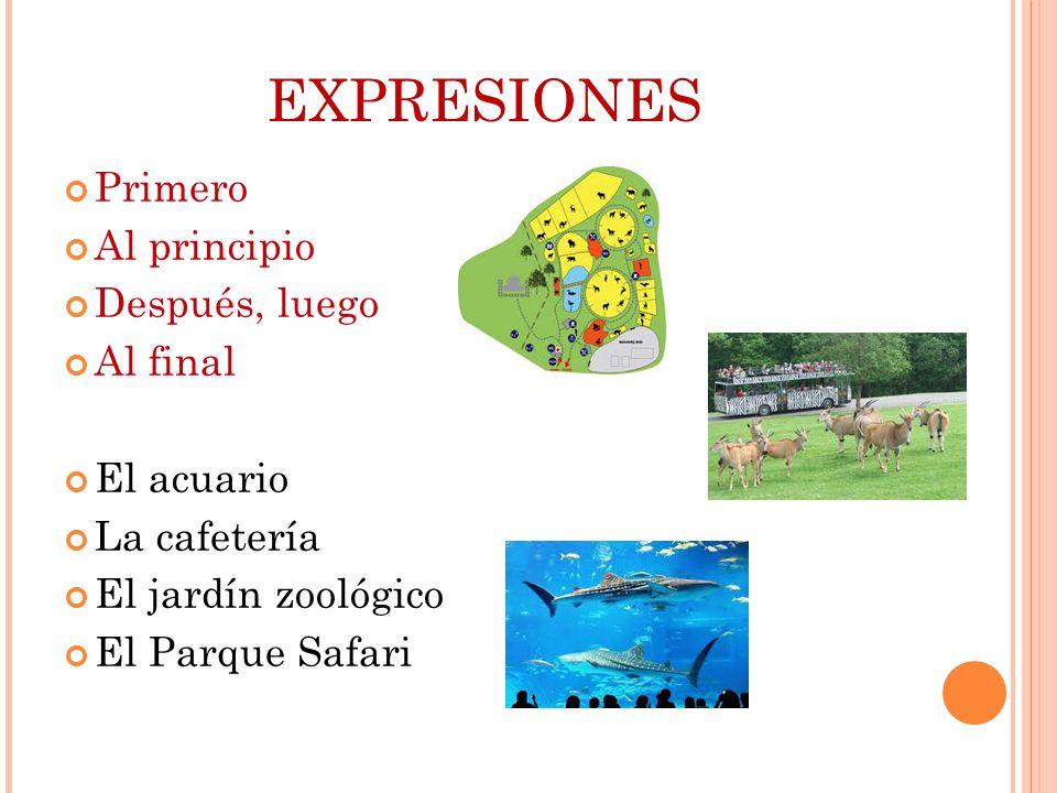 EXPRESIONES Primero Al principio Después, luego Al final El acuario La cafetería El jardín zoológico El Parque Safari