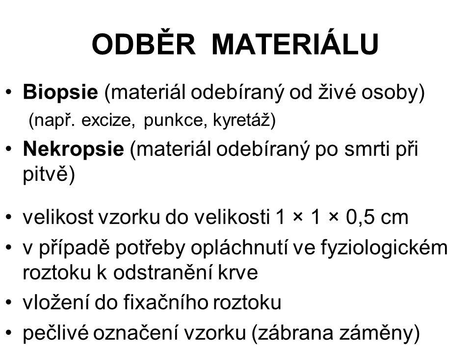 ODBĚR MATERIÁLU Biopsie (materiál odebíraný od živé osoby) (např. excize, punkce, kyretáž) Nekropsie (materiál odebíraný po smrti při pitvě) velikost