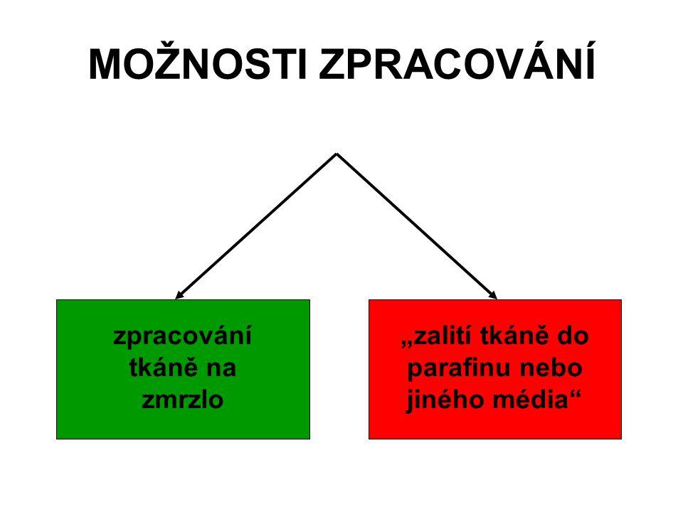 ZALÉVÁNÍ III