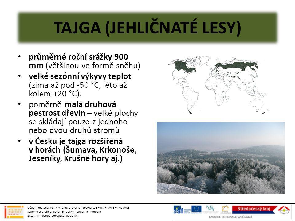 ROSTLINY A ŽIVOČICHOVÉ lesy jsou tvořeny převážně smrkem a jedlí, ve východní Sibiři modřínem z dalších stromů potom hlavně bříza a borovice větve stromů hodně ohebné = snášejí sněhovou zátěž sníh izoluje = chrání kořeny rostlin v drsných zimách živočichové migrují, hibernují nebo mají hustou srst býložravci: jeleni, losi, bobři, v zimě sobi dravci: medvěd, vlk, liška, sobol, norek, rosomák, rys z ptáků převažují druhy, které jsou schopné rozlousknout šišky – křivka Učební materiál vznikl v rámci projektu INFORMACE – INSPIRACE – INOVACE, který je spolufinancován Evropským sociálním fondem a státním rozpočtem České republiky.
