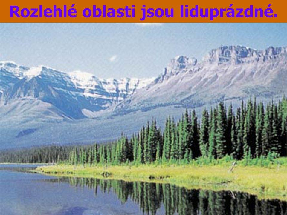Velkým modelačním činitelem byl ledovec.V době ledové pokrýval pevninský ledovec 97% území.