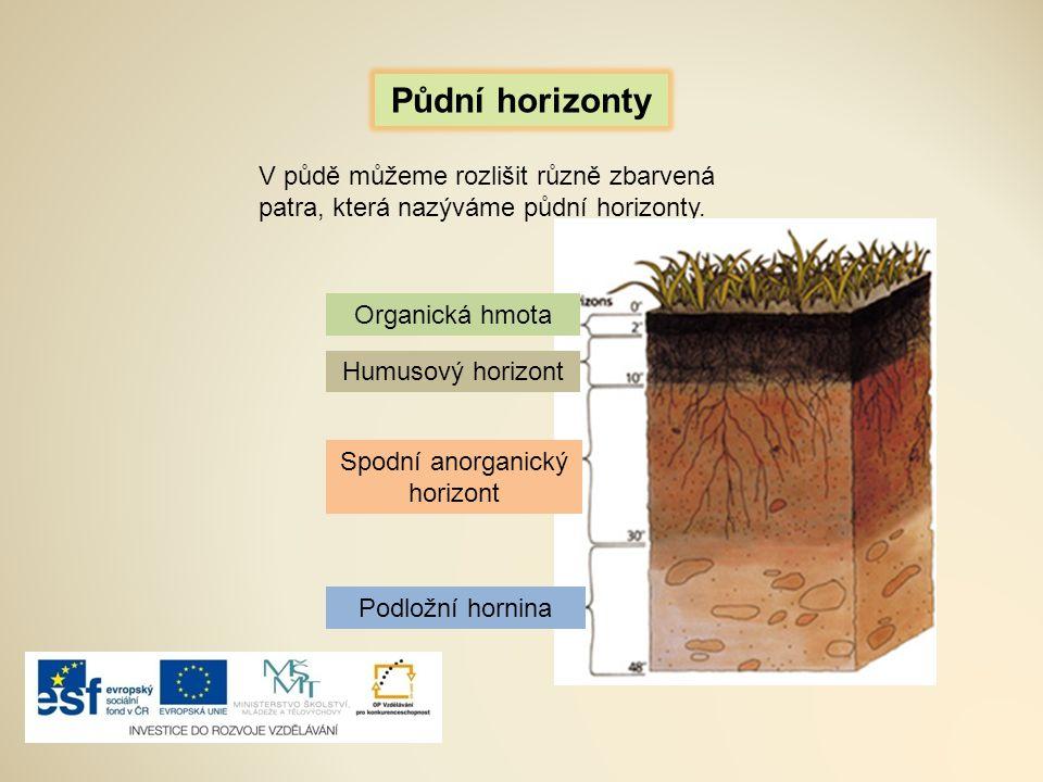PŮDYMateční hornina je matkou … KŮRYPedosféra je svrchní část zemské … TUNDŘETrvale zmrzlá půda se nachází v … ČERNOZEMVelice úrodná půda se nazývá … HLÍNANeživou část půdy tvoří … MIKROORGANISMYŽivou část půdy tvoří … PODNEBÍHlavní činitel ovlivňující půdu … ŽÍŽALA Drobný živočich, který tvoří živou část půdy.