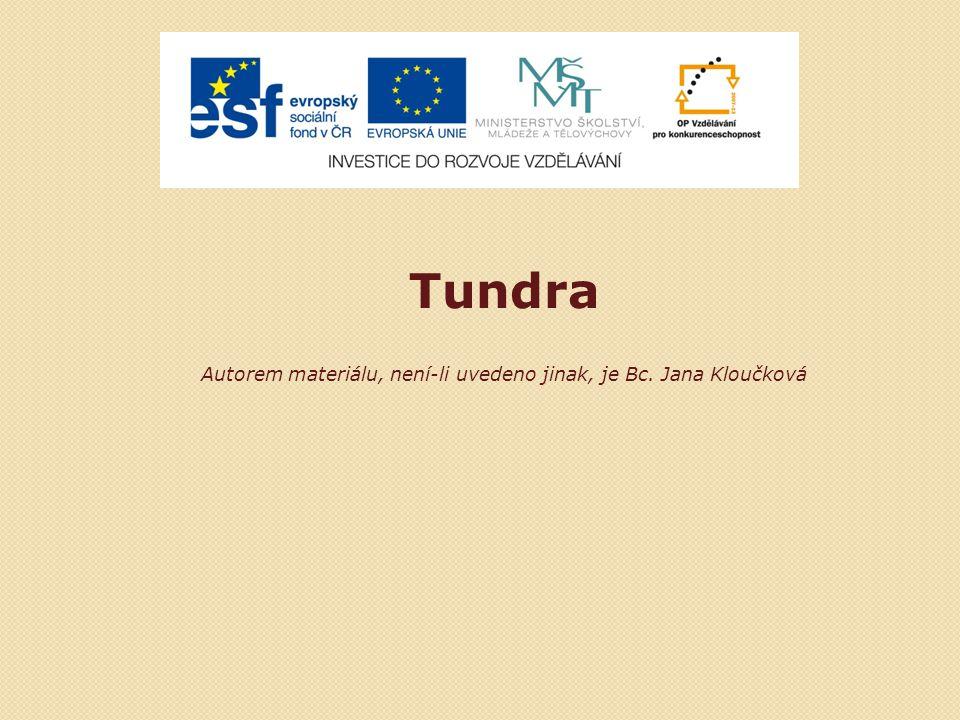 Tundra Autorem materiálu, není-li uvedeno jinak, je Bc. Jana Kloučková