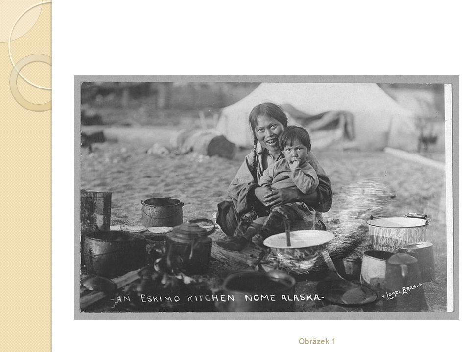 Úkoly Rozhodni, zda jsou následující tvrzení pravdivá: ◦ Tundra se nachází v nejsevernější části Ameriky.
