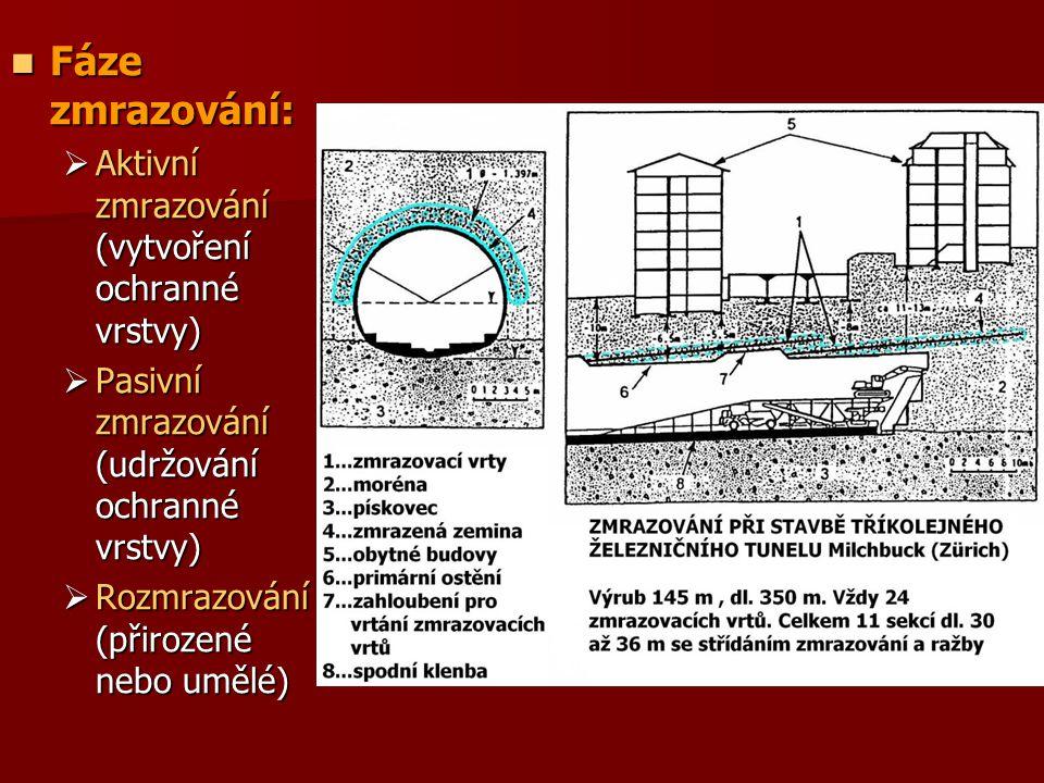 Fáze zmrazování: Fáze zmrazování:  Aktivní zmrazování (vytvoření ochranné vrstvy)  Pasivní zmrazování (udržování ochranné vrstvy)  Rozmrazování (př