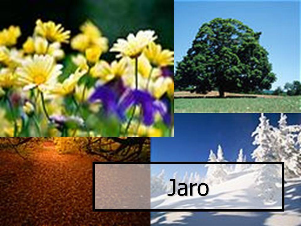 Jaro  Jarní měsíce : březen, duben, květen  Průměrné měsíční teploty - graf  Teplotní rekordy – tabulka  Začátek astronomického jara : 20.3.