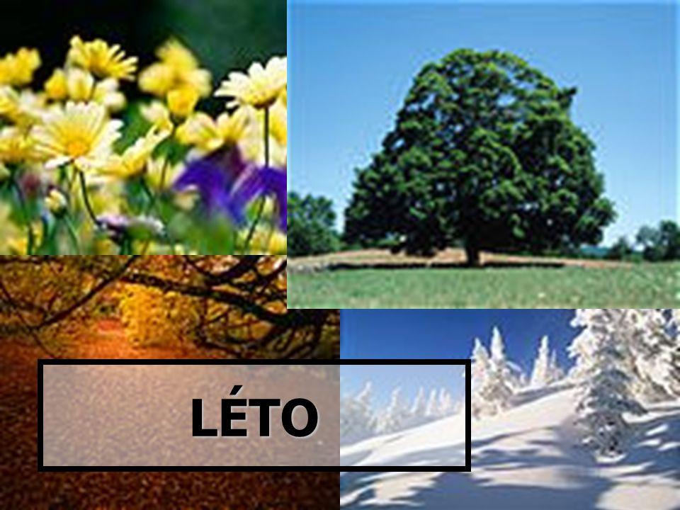 Léto  Léto je nejteplejší období v roce.