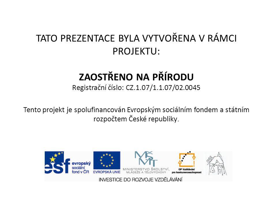 TATO PREZENTACE BYLA VYTVOŘENA V RÁMCI PROJEKTU: ZAOSTŘENO NA PŘÍRODU Registrační číslo: CZ.1.07/1.1.07/02.0045 Tento projekt je spolufinancován Evrop