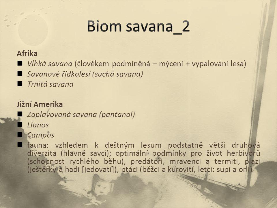Afrika Vlhká savana (člověkem podmíněná – mýcení + vypalování lesa) Savanové řídkolesí (suchá savana) Trnitá savana Jižní Amerika Zaplavovaná savana (