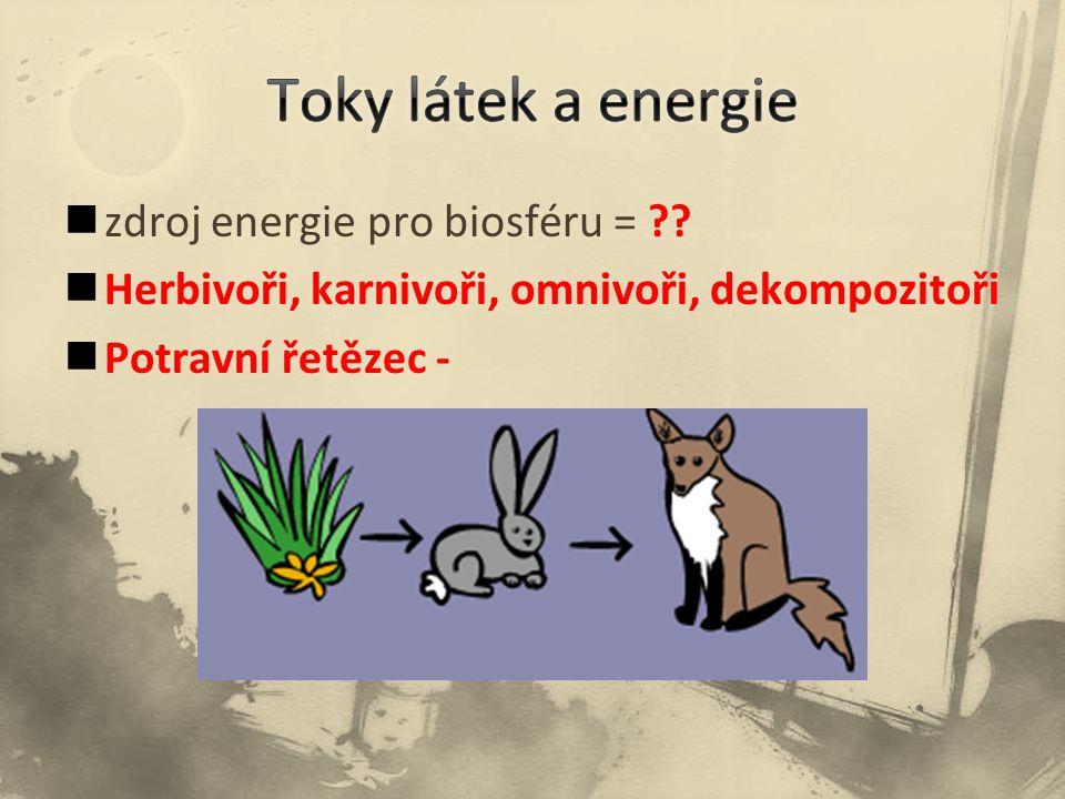 zdroj energie pro biosféru = ?? Herbivoři, karnivoři, omnivoři, dekompozitoři Potravní řetězec -