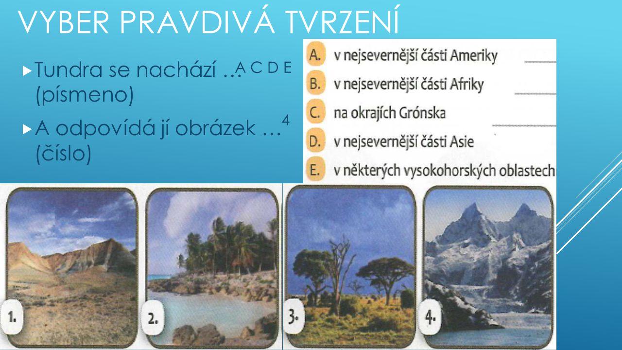 VYBER PRAVDIVÁ TVRZENÍ  Tundra se nachází … (písmeno)  A odpovídá jí obrázek … (číslo) A C D E 4